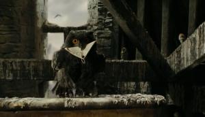 Black_owl